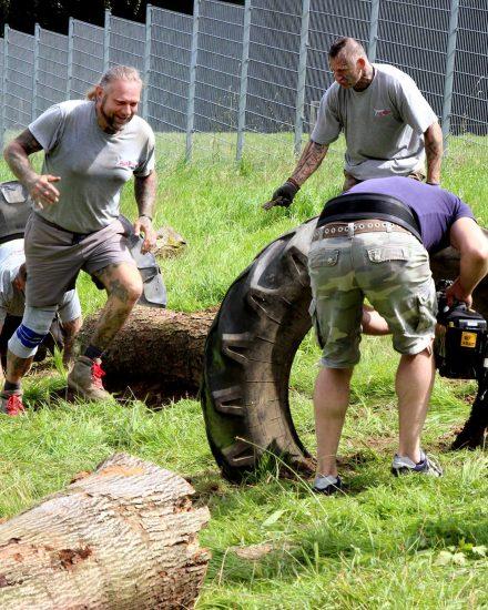 Tierheim Dornbusch Hunde