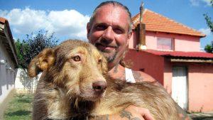 Die Harten Hunde Tierheim Dornbusch